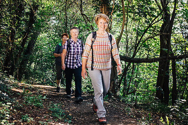 Gut gelaunte Wanderer beim wandern durch den Wald