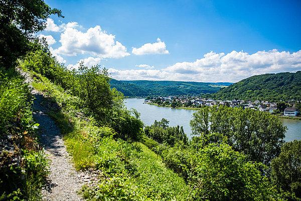 Tolle Aussicht von oben auf den Rhein