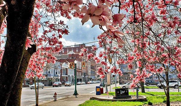 Marietta (Ohio/USA) im Frühling