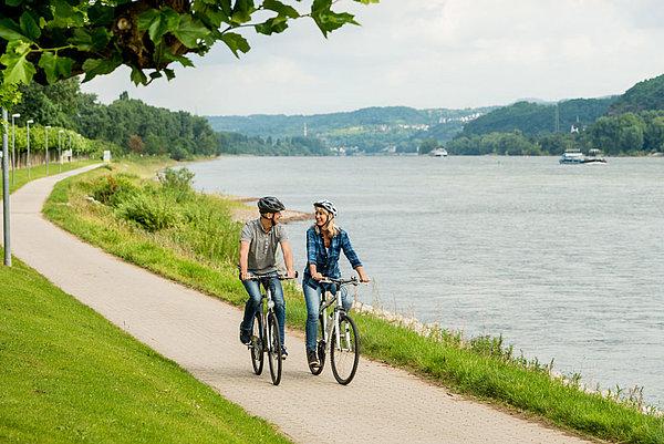 Paar beim Radfahren am grünen Rheinufer