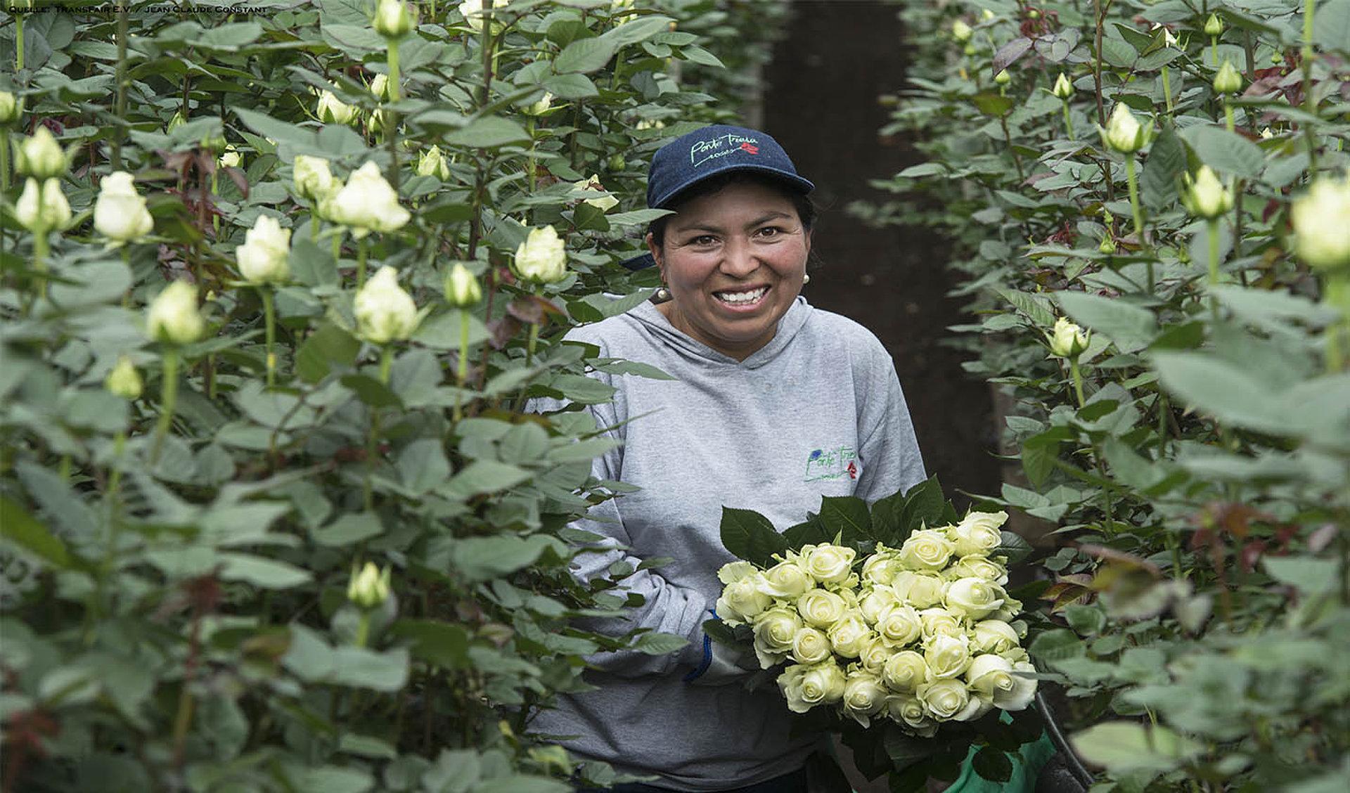 Frau beim Blumenpflücken