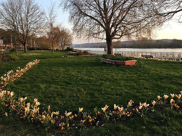 Beet Stadtgarten mit Boot