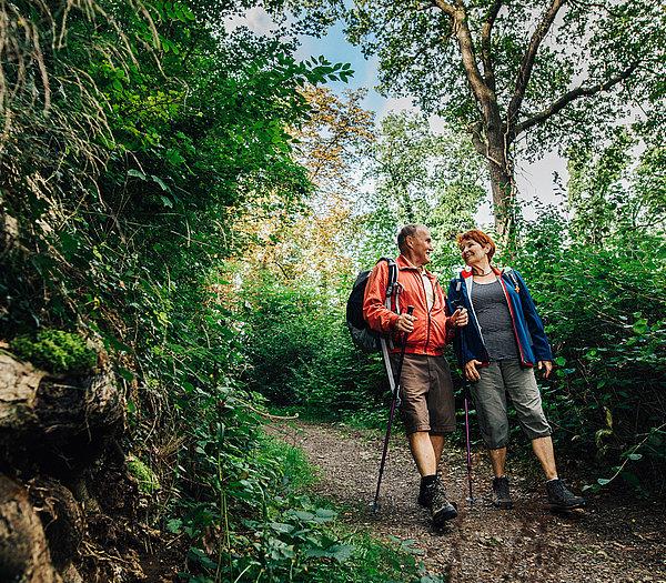 Gut gelauntes Paar beim Wandern im Wald bei strahlendem Sonnenschein
